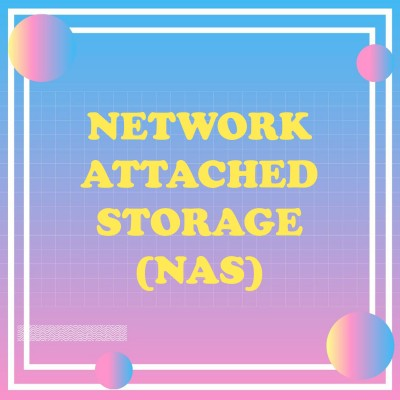 Network Attached Storage(NAS)